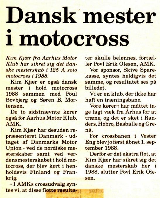 Avisklip om DM 1988.