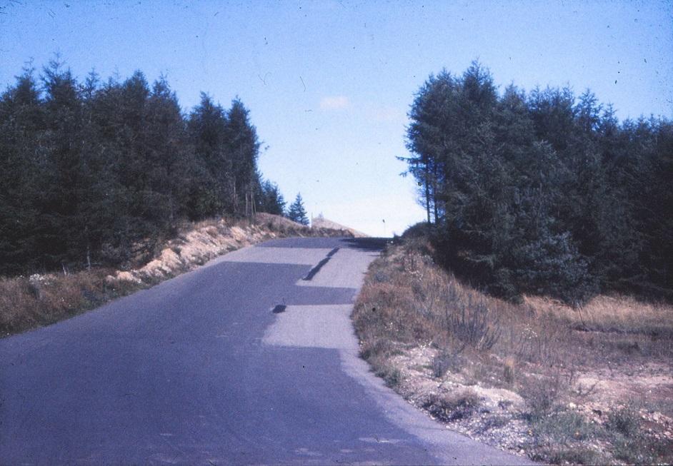 Et view over lapper på asfalten.